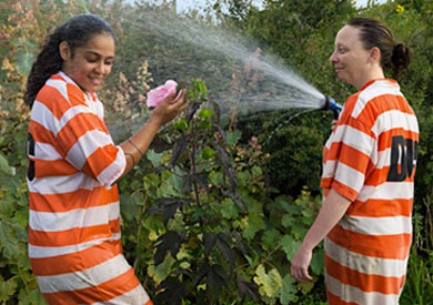 Two women in orange striped jumpsuits spraying water from a hose.